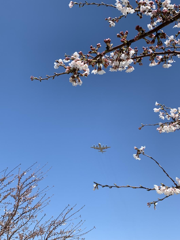 厚木海軍飛行場から飛ぶ飛行機