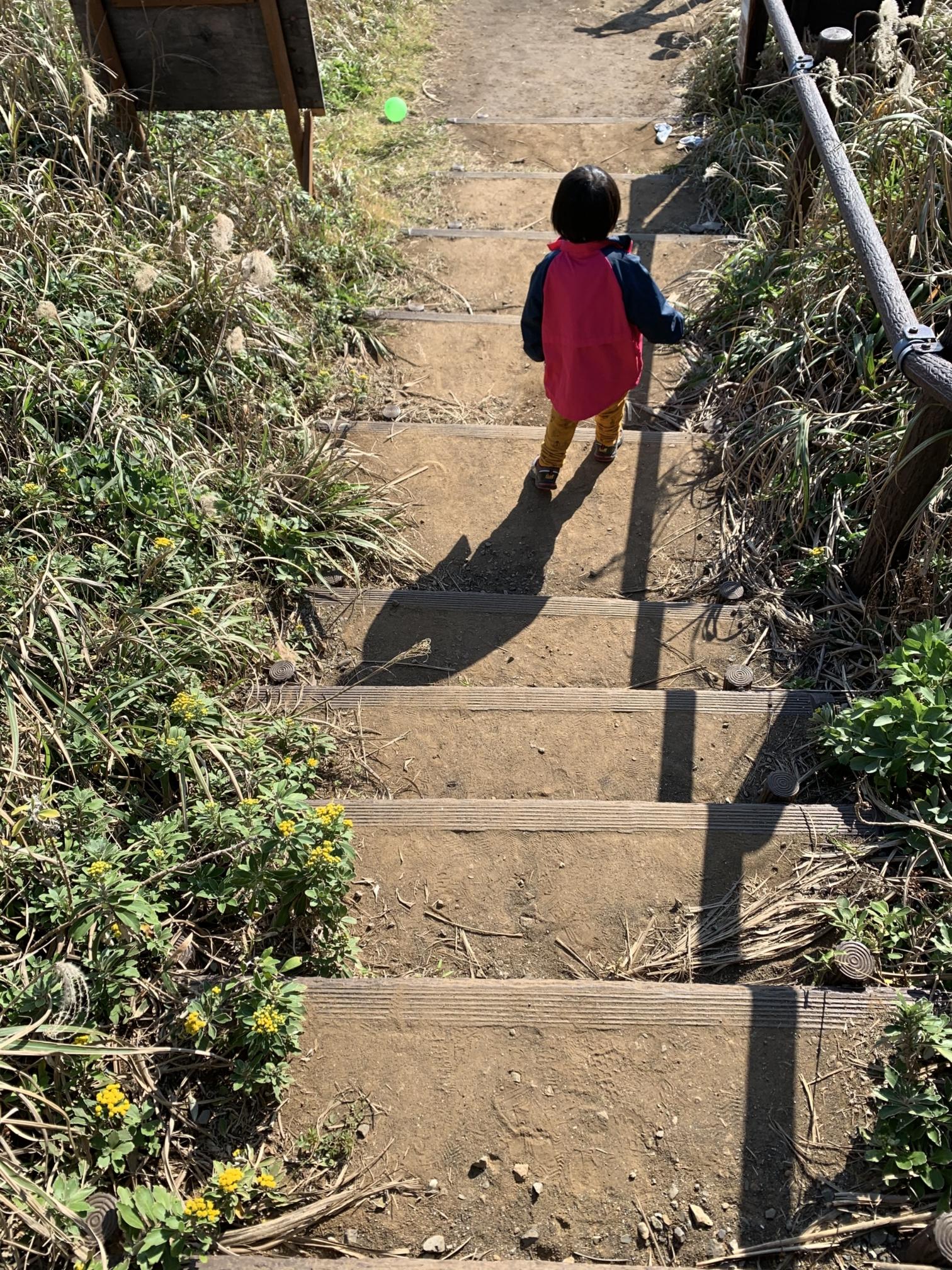 ソレイユの丘海へと続く階段