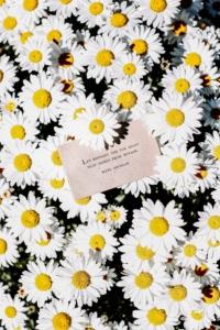 ポエムと花